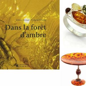 Album : Dans la forêt d'ambre (F6)