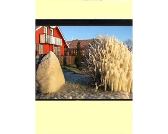 Neringa Lithuania Accomodation Guide en anglais